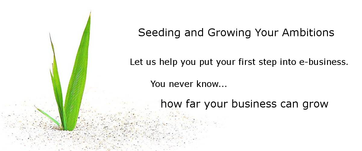 Seeding and Growing Your Ambitions
